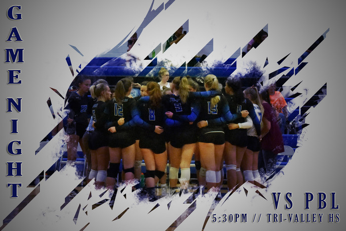 Vikings volleyball
