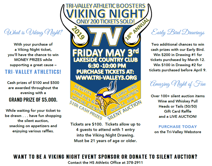 What is Viking Night?