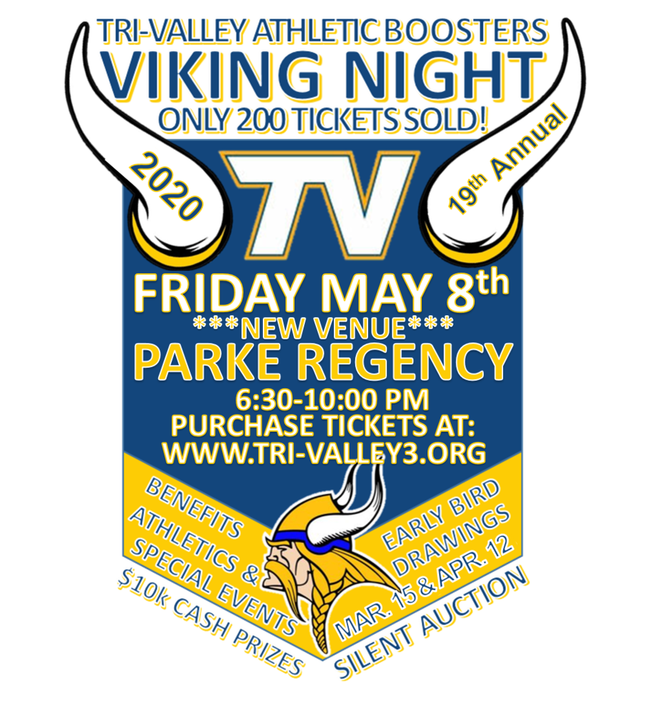 Viking Night 2020